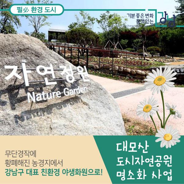 무단경작에 황폐해진 농경지에서 강남구 대표 친환경 야생화원으로! 대모산 도시자연공원 명소화 사업