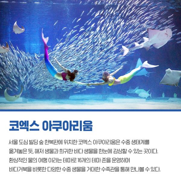 코엑스 아쿠아리움 서울 도심 빌딩 숲 한복판에 위치한 코엑스 아쿠아리움은 수중 생태계를 옮겨놓은 듯, 해저 생물과 희귀한 바다 생물을 한눈에 감상할 수 있는 곳이다. 환상적인 물의 여행 이라흔ㄴ 테마로 16개의 테마 존을 운영하며 바다거북을 비롯한 다양한 수중 생물을 거대한 수족관을 통해 만나볼 수 있다.