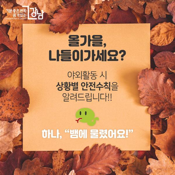 """[카드뉴스] 야외활동 시 안전수칙 1 """"뱀에 물렸어요"""""""