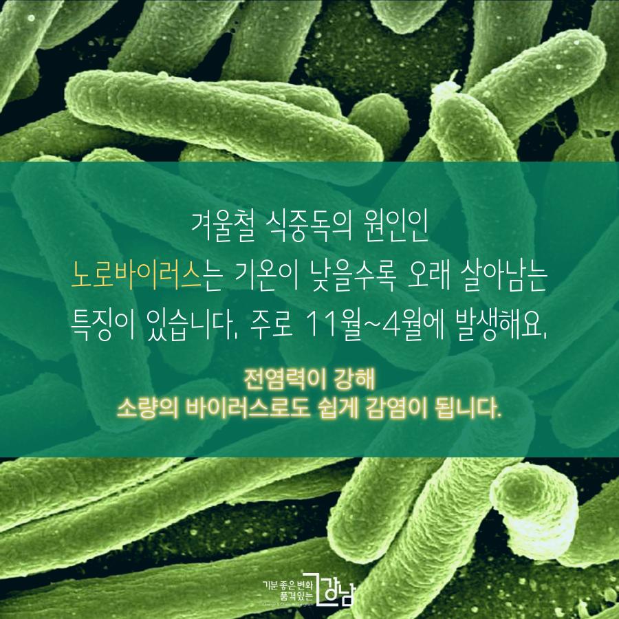 겨울철 불청객 노로바이러스를 조심하세요!