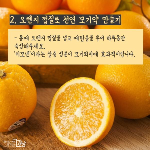 2. 오렌지 껍질로 천연 모기약 만들기 - 통에 오렌지 껍질을 넣고 에탄올을 부어 하루동안 숙성해주세요.  '리모넨'이라는 살충 성분이 모기퇴치에 효과적이랍니다.
