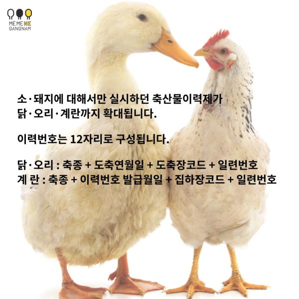 소·돼지에 대해서만 실시하던 축산물이력제가 닭·오리·계란까지 확대됩니다. 이력번호는 12자리로 구성됩니다. 닭·오리 : 축종 + 도축연월일 + 도축장코드 + 일련번호 계란 : 축종 + 이력번호 발급월일 + 집하장코드 + 일련번호
