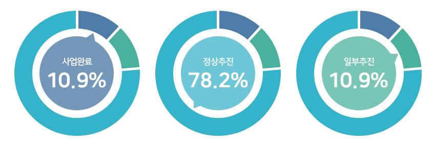 사업완료 10.9%, 정상추진 78.2%, 일부추진 10.9%.