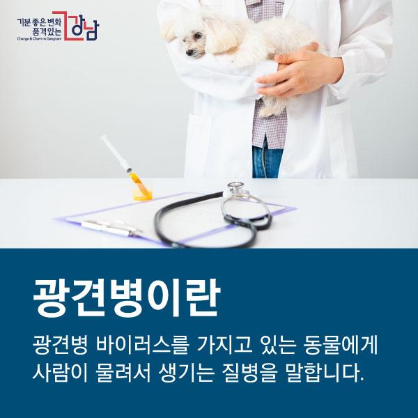 광견병이란 광견병 바이러스를 가지고 있는 동물에게 사람이 물려서 생기는 질병을 말합니다.