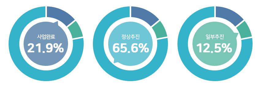 사업완료 18.8%, 정상추진 70.3%, 일부추진 10.9%.