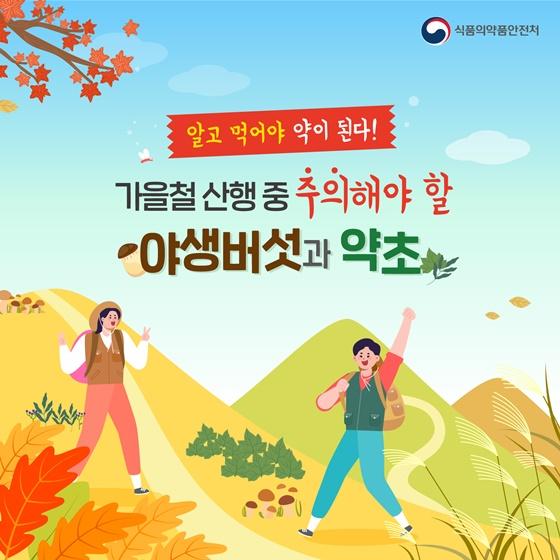 [카드뉴스] 가을철 산행, 주의해야 할 야생버섯과 약초