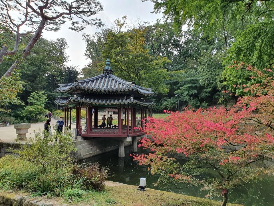 [우수상] 김귀옥-멋진 가을의 고궁