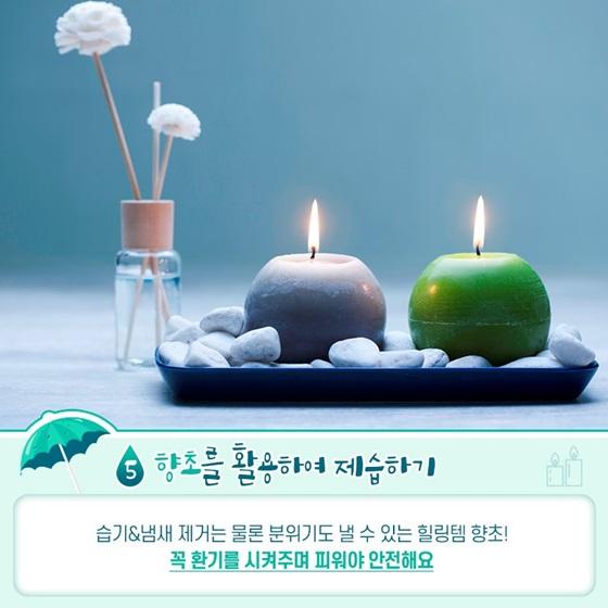 꿉꿉한 장마철 습기 관리법 5