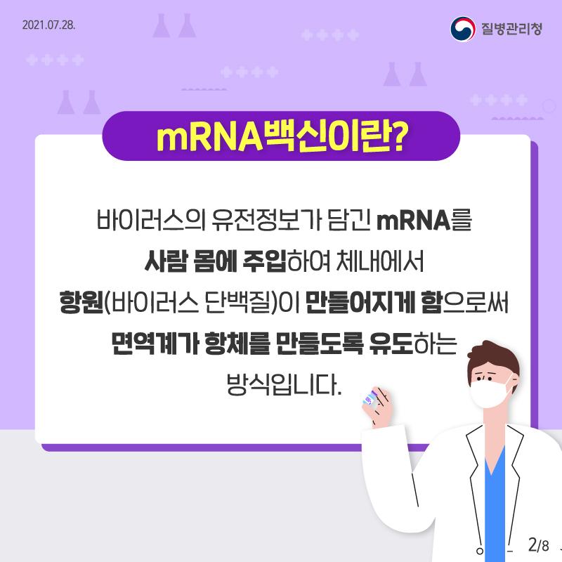 mRNA 백신이란? 바이러스 유전정보가 담긴 mRNA를 사람 몸에 주입하여 체내에서 항원(바이러스 단백질)이 만들어지게 함으로써 면역계가 항체를 만들도록 유도하는 방식입니다.